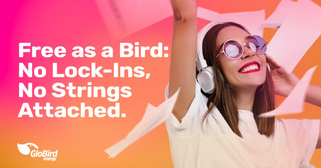 Free as a Bird No Lock-Ins, No Strings
