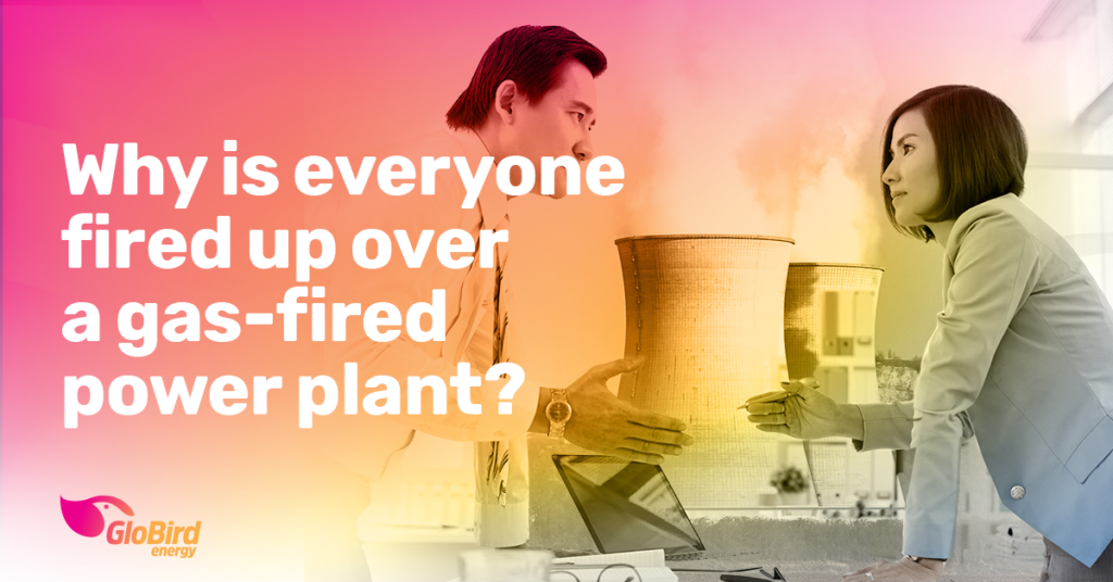 Why is everyone fired up over a gas-fired power plant?